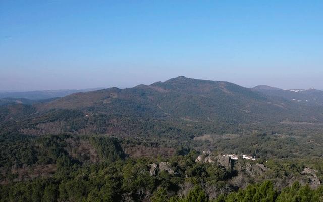 Sendero Castaño del Robledo - Sierra de los Palos Altos