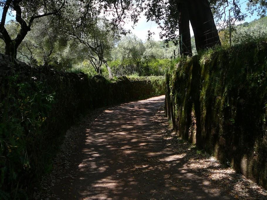 Sendero Higuera de la Sierra – La Umbría alquiler casa rural sierra huelva 04