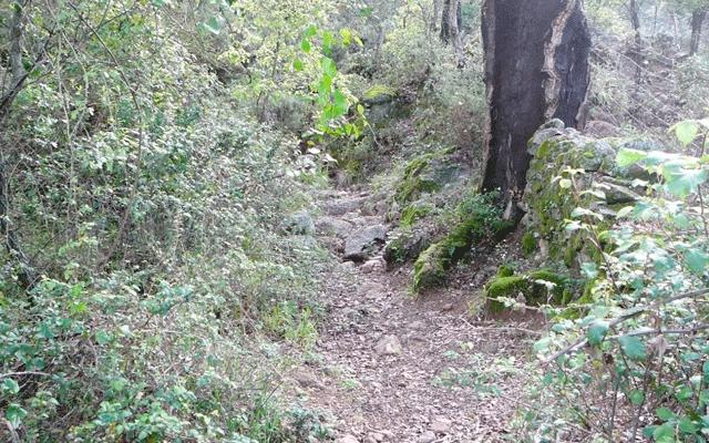 Ruta Cortegana – Almonaster la Real Casas rurales en la sierra de Huelva 12
