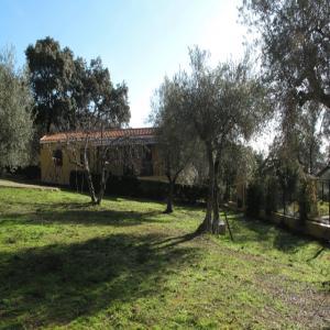 Casa Rural Buena Vista. Aracena
