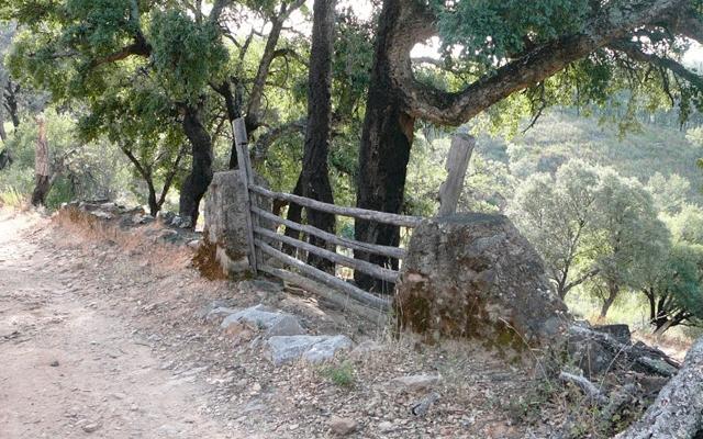 Sendero Rodeo Sierra de las Cumbres Santa Ana Alájar
