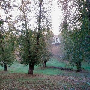 Sendero Aracena – Fuenteheridos