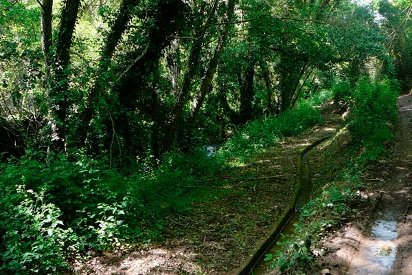 senderismo sierra de huelva sendero ruta casa rural