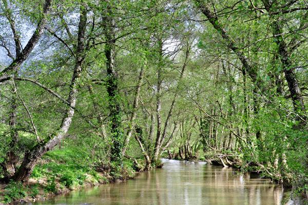 Rio Caliente Sierra de Aracena
