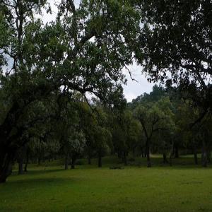 Sendero Alájar – Santa Ana la Real