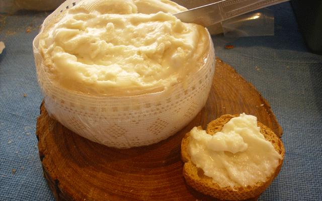 queso de cabra aracena