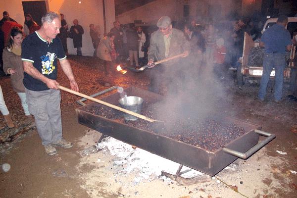 toston-solidario-castañas-aracena-sierra-de-huelva-casa-rural