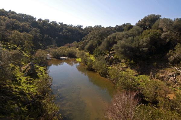 Ribera-del-Chanza-Rosal-de-la-Frontera-Sierra-de-Huelva-casa-rural-Aracena-02