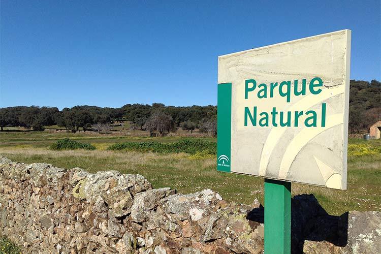 senderismo por el parque natural sierra de aracena y picos de aroche