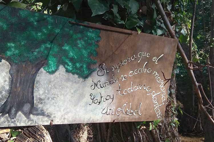 Sendero Santa Ana Bosque de las Letras